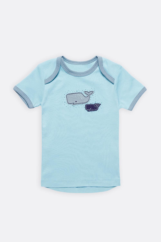 Shirt Wale/Seestern