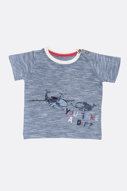 Shirt Wal