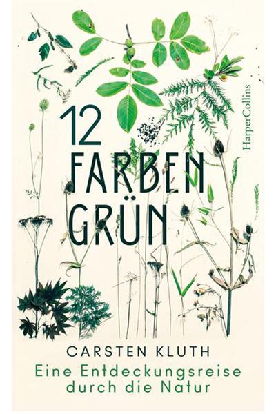 12 Farben Grün